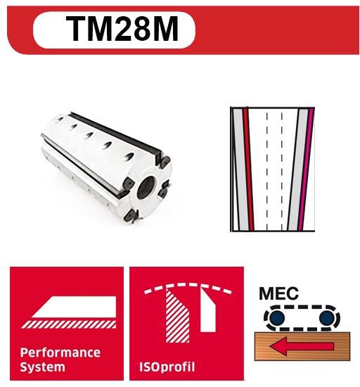 TM28M_1