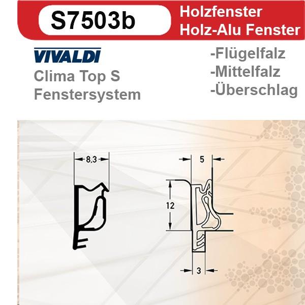 Verglasungsdichtung S7503b
