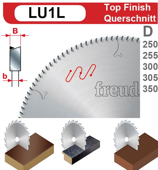 HW Sägeblatt / Querschnitt (FWZ)